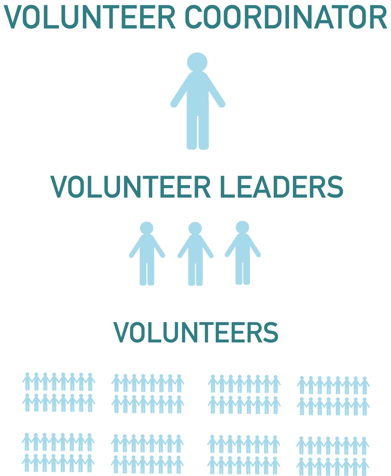 Volunteer Group Structure